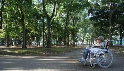 母の介護と車椅子での散歩風景・清澄公園230925kiyosumikouen1000_2.jpg