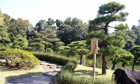母の介護と車椅子での散歩風景・清澄庭園kiyosumi04.jpg