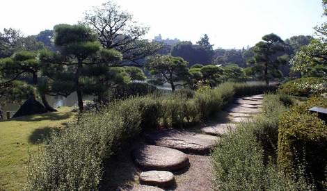 母の介護と車椅子での散歩風景・清澄庭園kiyosumi08.jpg