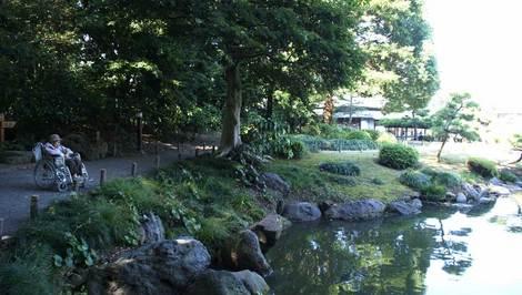 母の介護と車椅子での散歩風景・清澄庭園 kiyosumi11.jpg