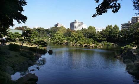 母の介護と車椅子での散歩風景・清澄庭園kiyosumi15.jpg