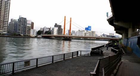 sinohhasi_04.jpg