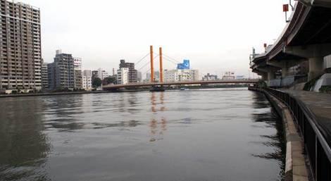sinohhasi_05.jpg