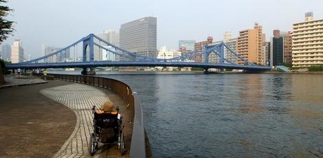 母の介護と車椅子での散歩風景・
