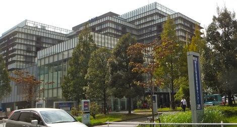 母の介護と車椅子での散歩風景・東京江東高齢者医療センター