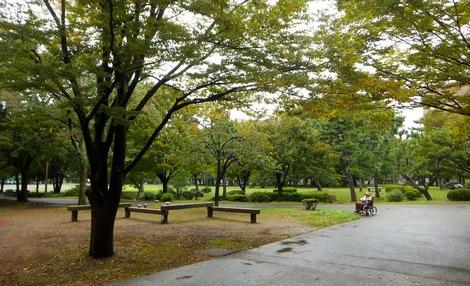 251025kiyosumi-2.JPG母の介護と車椅子での散歩風景・清澄公園2