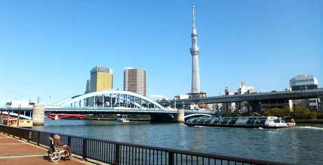 251108komagatabashi.JPG母の介護と車椅子での散歩風景-隅田川から東京スカイツリーと駒形橋を見る