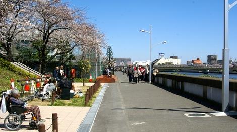 260331sakura-1.JPG・母の介護と車椅子での散歩風景・隅田川の桜橋