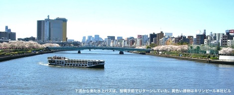 260331sakura-10.JPG・母の介護と車椅子での散歩風景・隅田川の桜橋