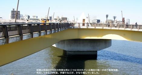 260331sakura-11.JPG歩行者専用橋の桜橋