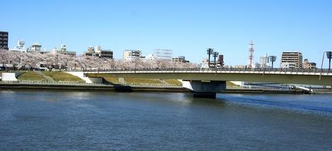 260331sakura-12.JPG・母の介護と車椅子での散歩風景・隅田川の桜橋