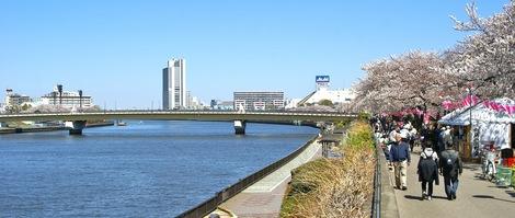 260331sakura-13.JPG・母の介護と車椅子での散歩風景・隅田川の桜橋
