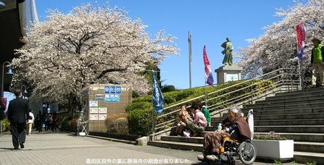 260331sakura-18.JPG・母の介護と車椅子での散歩風景・隅田川の桜橋