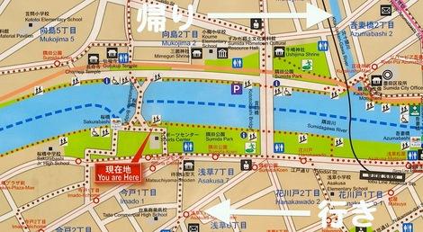 260331sakura-3.JPG・母の介護と車椅子での散歩風景・隅田川の桜橋