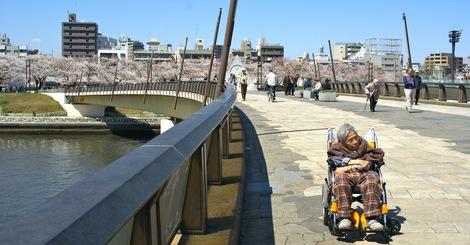 260331sakura-9.JPG・母の介護と車椅子での散歩風景・隅田川の桜橋