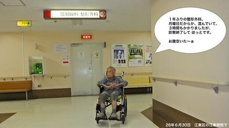 260630kohtobyoinu.JPG江東病院で