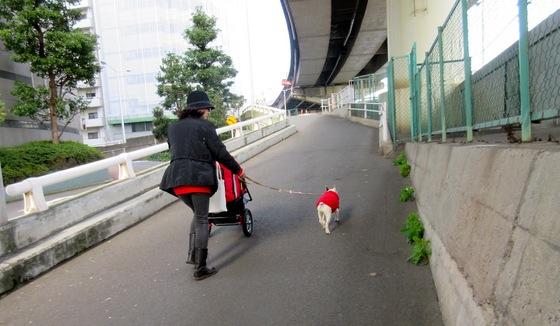 wan271206koharu-1.JPGわんちゃん散歩中