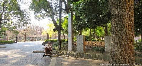 20160105-2.JPG新年最初の散歩は中村中学校・高等学校の空中図書室