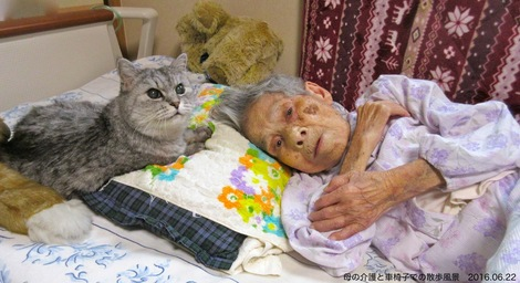 20160622.JPG母の介護と車椅子での散歩風景