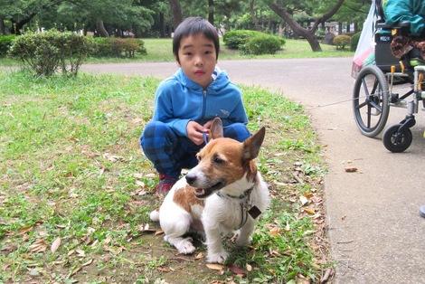 151010soi-4.JPGわんちゃん散歩中と母の介護と車椅子での散歩風景