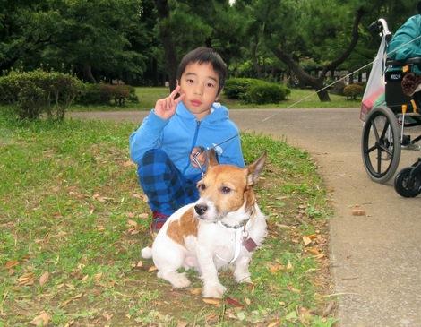 151010soi-5.JPGわんちゃん散歩中と母の介護と車椅子での散歩風景